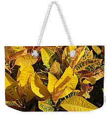 Colorful Crotons Weekender Tote Bag by Kenneth Albin