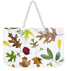 Weekender Tote Bag featuring the photograph Colorful Fall Leaves by Elena Nosyreva