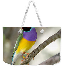 Colorful Gouldian Finch Weekender Tote Bag