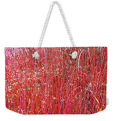 Weekender Tote Bag featuring the photograph Colorful Grasses Pano by Ellen O'Reilly