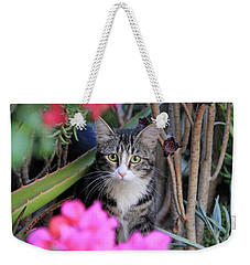 Colorful Kitty Weekender Tote Bag