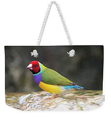 Colorful Lady Gulian Finch  Weekender Tote Bag by Penny Lisowski