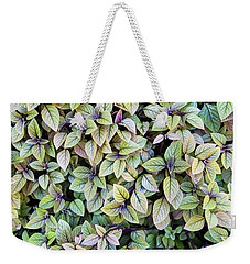 Weekender Tote Bag featuring the photograph Colorful Leaves Bush,the Color And Textured Of Nature In Natural by Jingjits Photography