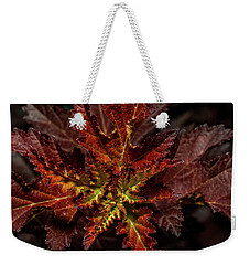 Weekender Tote Bag featuring the photograph Colorful Leaves by Paul Freidlund
