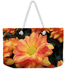 Weekender Tote Bag featuring the photograph Colorful Mums by Ray Shrewsberry