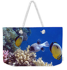 Colorful Red Sea Fish And Corals Weekender Tote Bag
