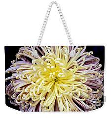 Colorful Spider Chrysanthemum   Weekender Tote Bag