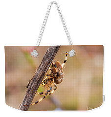 Colorful Spider Hanging From The Stick  Weekender Tote Bag