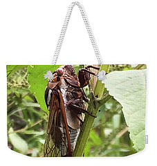 Colorful Summer Cicada Weekender Tote Bag
