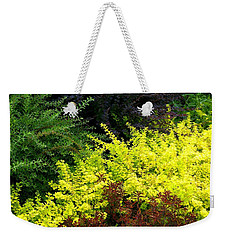 Weekender Tote Bag featuring the photograph Colorful Summer Foliage by Will Borden