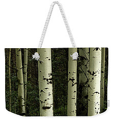Weekender Tote Bag featuring the photograph Colors And Texture Of A Forest Portrait by James BO Insogna