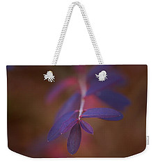 Weekender Tote Bag featuring the photograph Colors In Winter by Shane Holsclaw