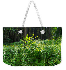 Colors Of A Forest In Vogelsberg Weekender Tote Bag