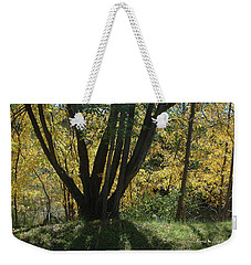 Colors Of Fall 2 Weekender Tote Bag