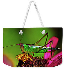 Weekender Tote Bag featuring the photograph Colors Of Nature - Grasshopper On A Zinnia 001 by George Bostian