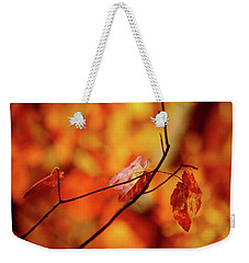 Weekender Tote Bag featuring the photograph Colors by Robert Geary