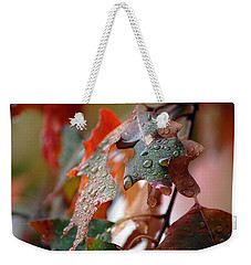 Colours Of Fall I Weekender Tote Bag by Robert Meanor