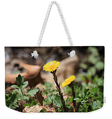 Weekender Tote Bag featuring the photograph Coltsfoot by Rick Morgan