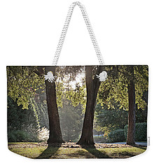 Weekender Tote Bag featuring the photograph Come On Spring by Phil Mancuso