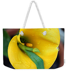 Come Out Come Out Weekender Tote Bag by Marie Neder