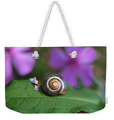 Weekender Tote Bag featuring the photograph Come Out Of Your Shell by Susan Dimitrakopoulos