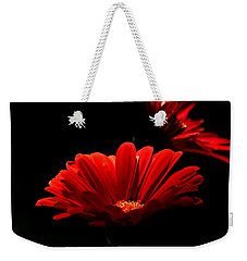 Coming In To The Light Weekender Tote Bag by Sheila Brown