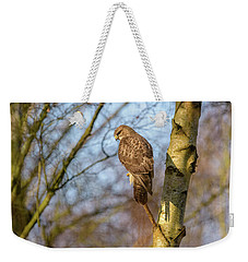 Common Buzzard Weekender Tote Bag by Matt Malloy
