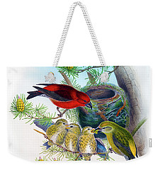 Common Crossbill Antique Bird Print John Gould Hc Richter Birds Of Great Britain  Weekender Tote Bag by Orchard Arts