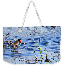 Weekender Tote Bag featuring the photograph Common Gallinule by Gary Wightman