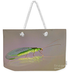 Weekender Tote Bag featuring the photograph Common Green Lacewing - Chrysoperla Carnea by Jivko Nakev