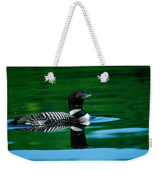 Common Loon In Water, Michigan, Usa Weekender Tote Bag by Panoramic Images
