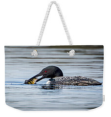 Common Loon Square Weekender Tote Bag by Bill Wakeley