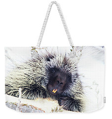 Common Porcupine Weekender Tote Bag