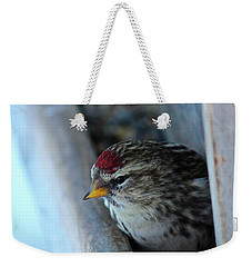Common Redpoll Weekender Tote Bag