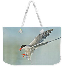Common Tern In Flight Weekender Tote Bag