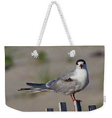 Common Tern Weekender Tote Bag