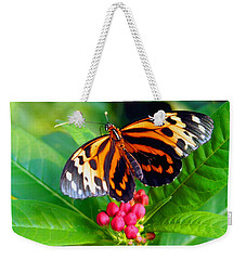 Common Tiger Glassywing Butterfly Weekender Tote Bag