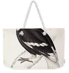 Concave Hornbill Weekender Tote Bag by John Gould