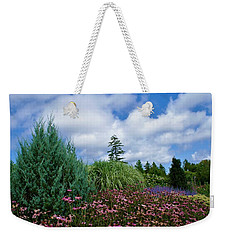 Coneflowers And Clouds Weekender Tote Bag by Lois Lepisto