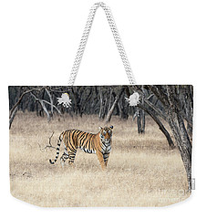 Weekender Tote Bag featuring the photograph Contemplation by Pravine Chester
