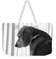 Contemplative Beagle Weekender Tote Bag