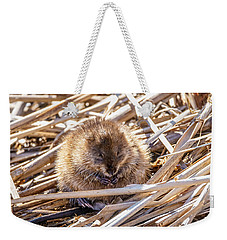 Weekender Tote Bag featuring the photograph Content Mildred by Steven Santamour