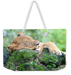 Contented Sleeping Lion Weekender Tote Bag