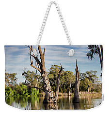Weekender Tote Bag featuring the photograph Contrasted by Douglas Barnard