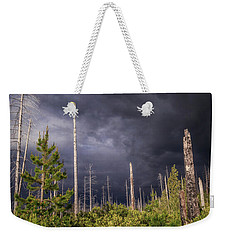 Weekender Tote Bag featuring the photograph Contrasts by Cat Connor