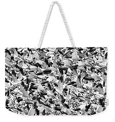 Weekender Tote Bag featuring the photograph Controlled Chaos Bw by Everet Regal