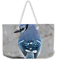Cool Colors Cold Day Weekender Tote Bag by Amy Porter