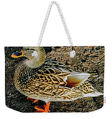 Weekender Tote Bag featuring the photograph Cool Duck by Roger Bester