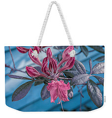 Weekender Tote Bag featuring the photograph Cool Sunset Budding Azalea by Aimee L Maher Photography and Art Visit ALMGallerydotcom