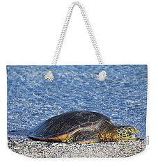 Weekender Tote Bag featuring the photograph Cooling Off by Pamela Walton